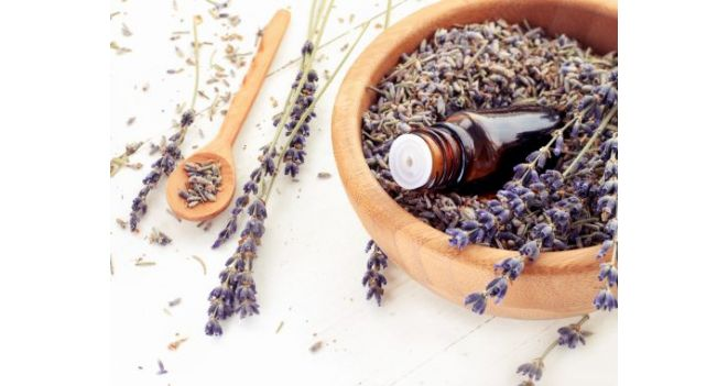 The power of essential oil scents